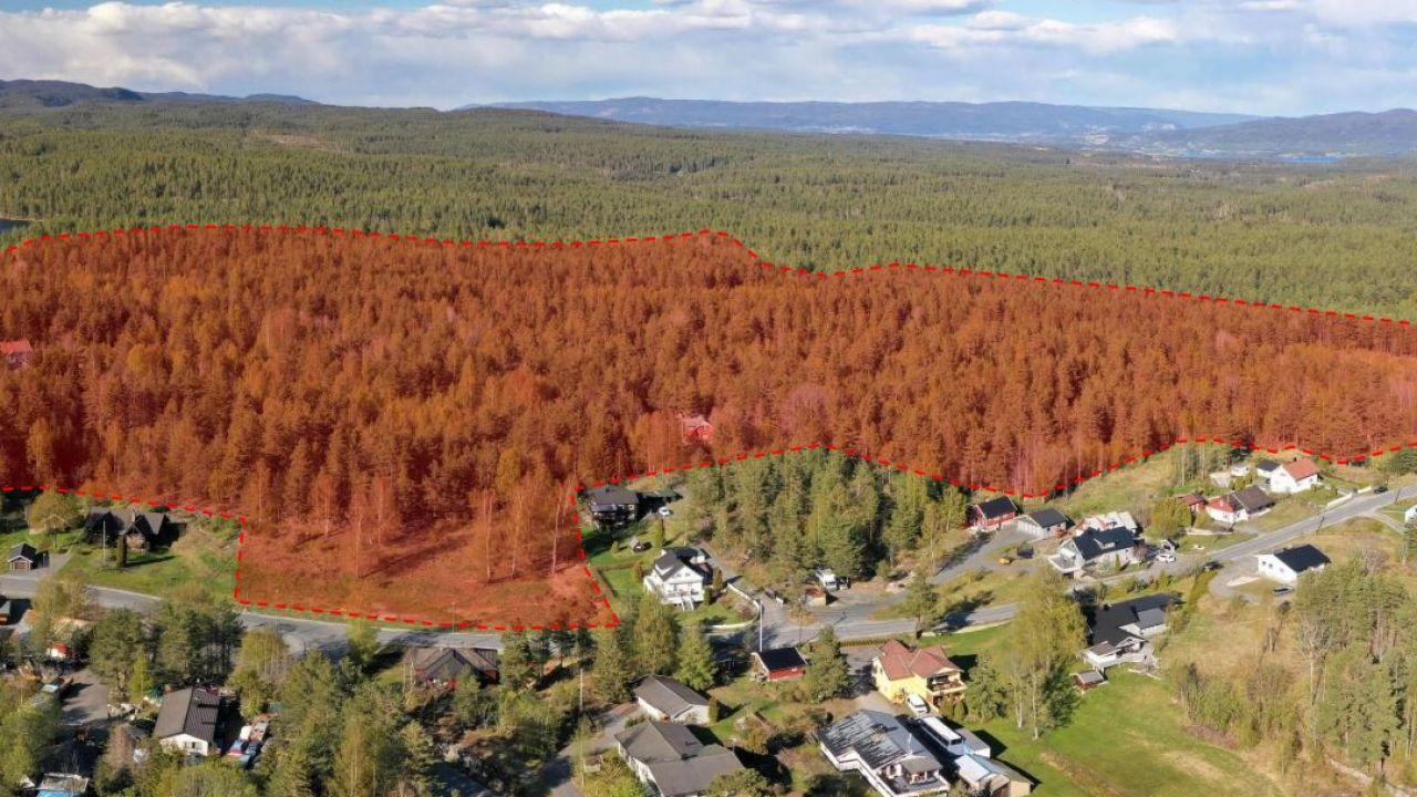 Rødshøgda omriss plankart